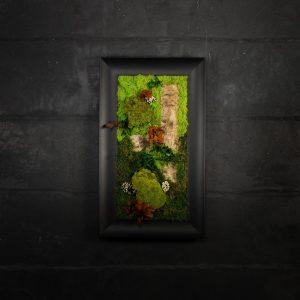 Quadro vegetale stabilizzato Cycas