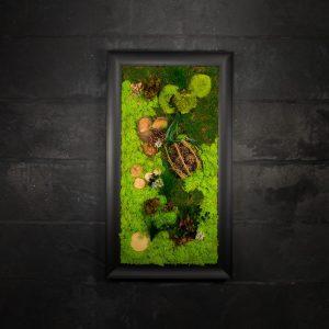 Quadro vegetale stabilizzato Eucalyptus