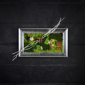 Quadro vegetale stabilizzato Betulla