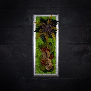 Quadro vegetale stabilizzato Brunia