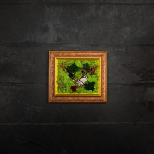 Quadro vegetale stabilizzato Pepe