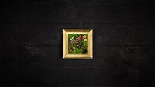 Quadro vegetale stabilizzato Cotinus